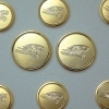 Cover Image for BLAZER BUTTON SET GOLD